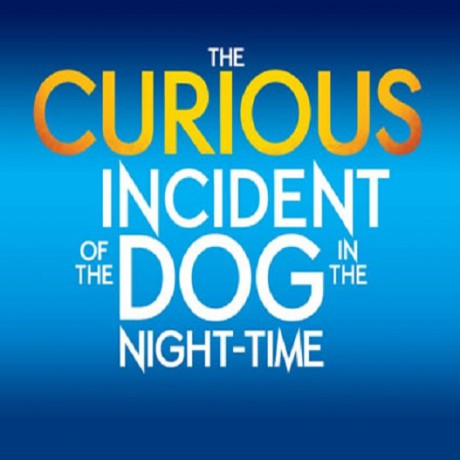 London Theatre- The Curious Incident Of The Dog in the Night-Time