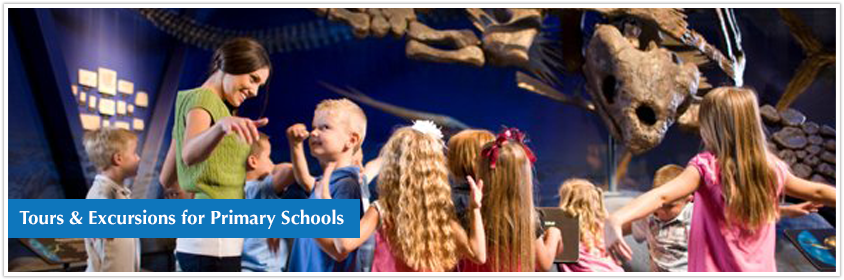 Tours & Excursions for Primary Schools in UK